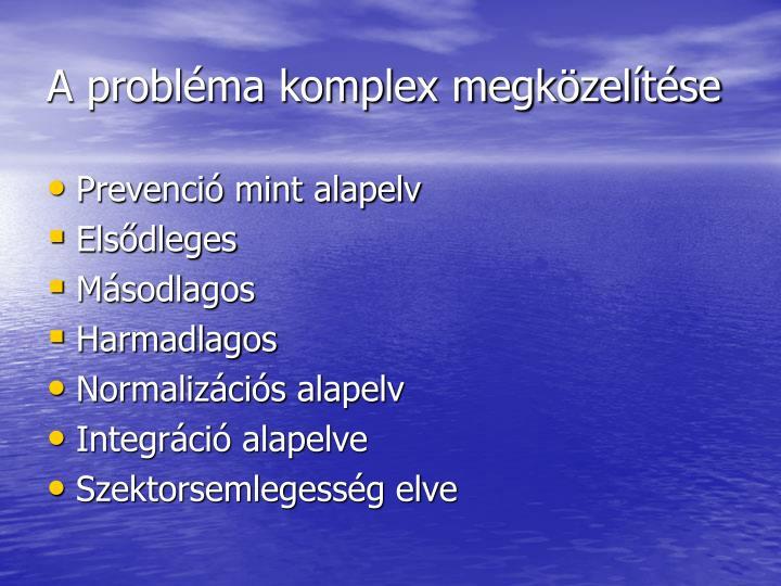 A probléma komplex megközelítése