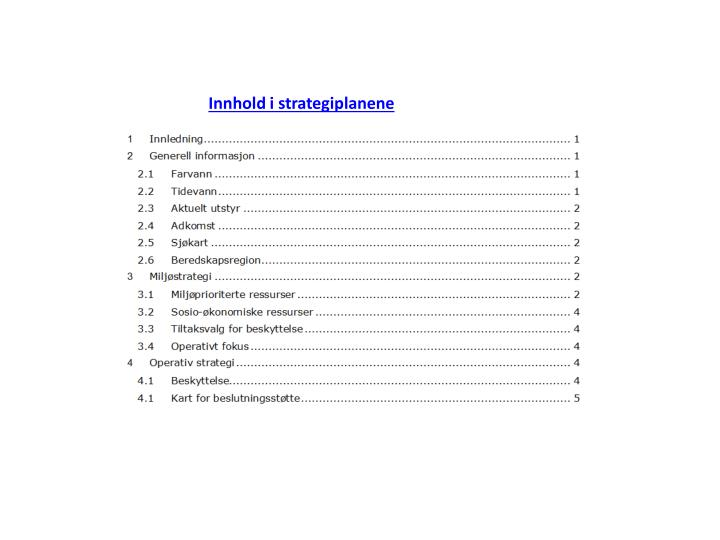 Innhold i strategiplanene