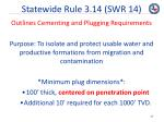 statewide rule 3 14 swr 14