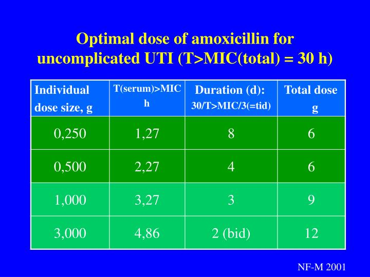 Optimal dose of amoxicillin for uncomplicated UTI (T>MIC(total) = 30 h)