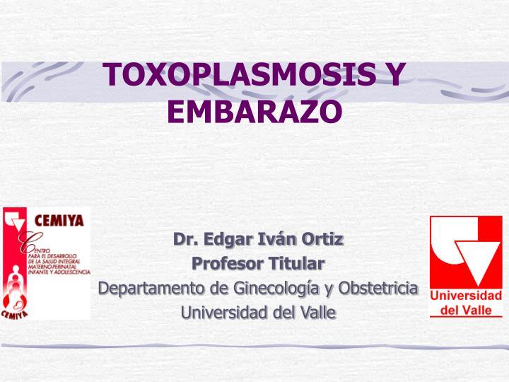toxoplasmosis y embarazo n.