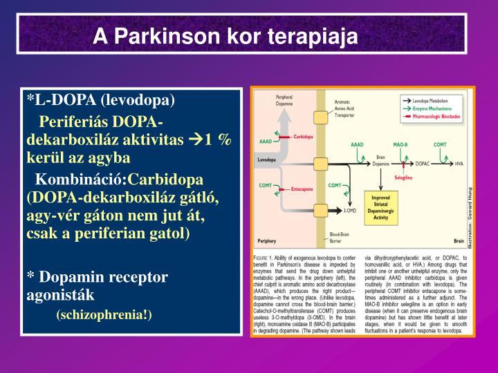 A Parkinson kor terapiaja