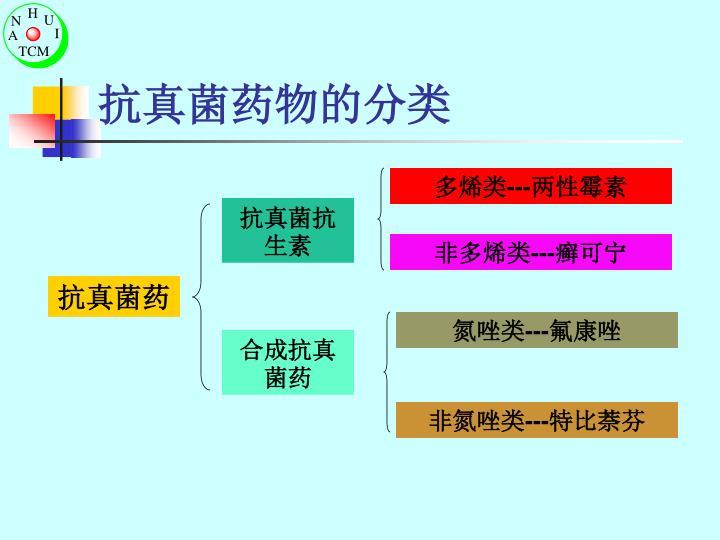 抗真菌药物的分类