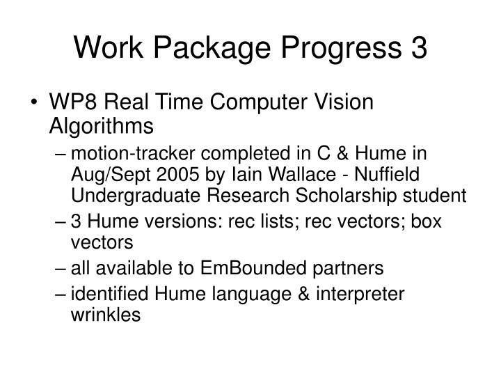 Work Package Progress 3
