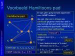 voorbeeld hamiltoons pad