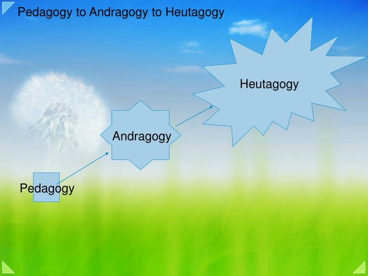 andragogy vs. pedagogy essay Andragogy vs pedagogy since andragogy and pedagogy are two teaching methods that are very popular, it is helpful to know the difference between pedagogy and andragogy, especially to those who are in the field of education andragogy is the subject that studies adult learning methodologies in their entirety, whereas pedagogy is the traditional.