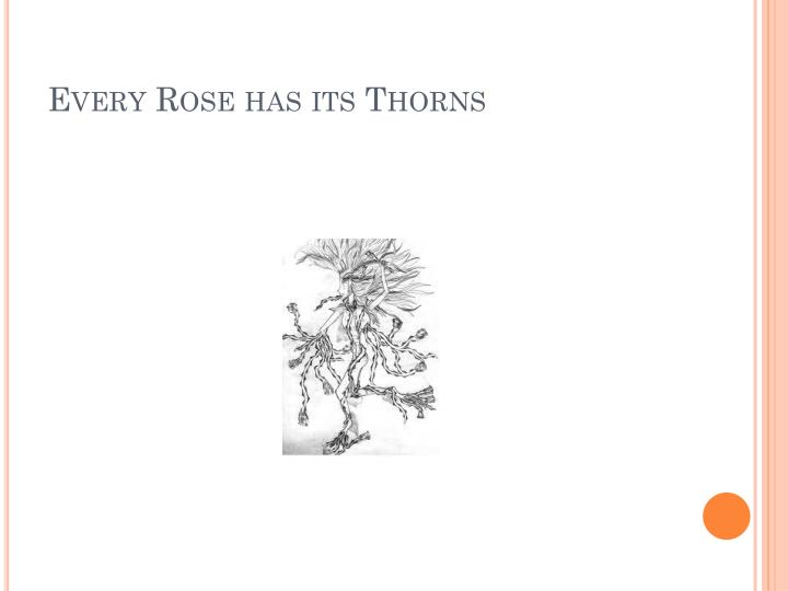 Every Rose has its Thorns