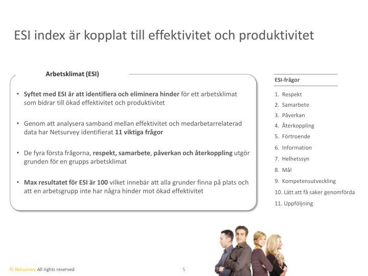 ESI index är kopplat till effektivitet och produktivitet