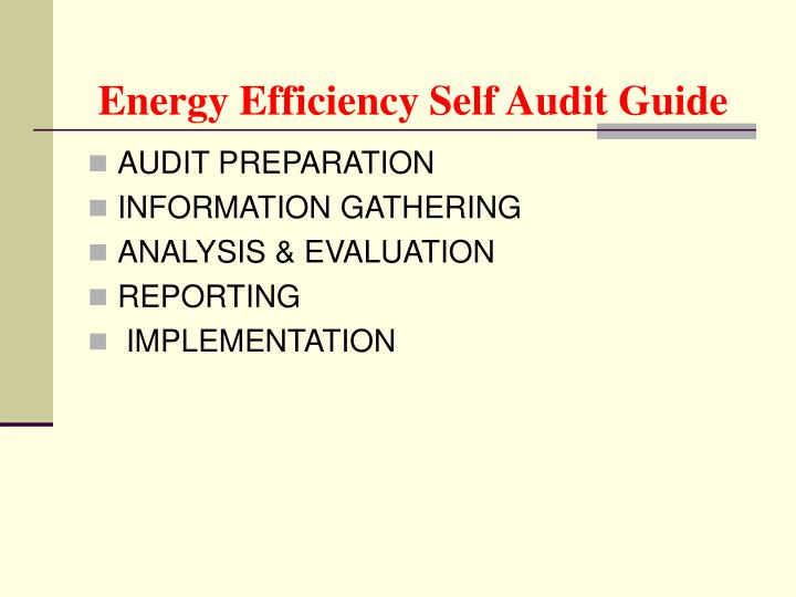 Energy Efficiency Self Audit Guide