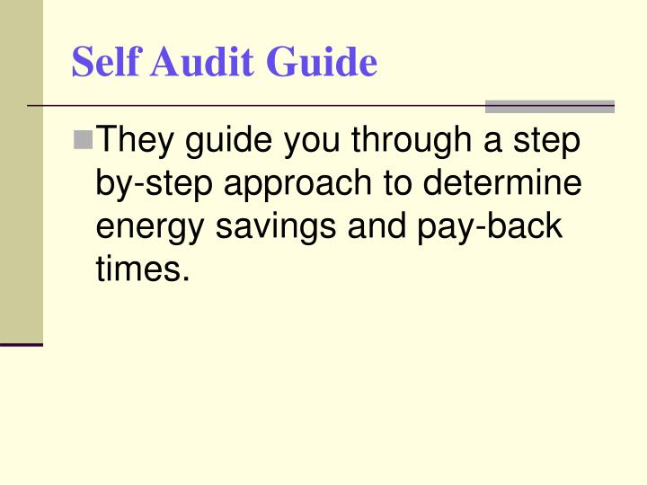 Self Audit Guide