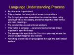language understanding process