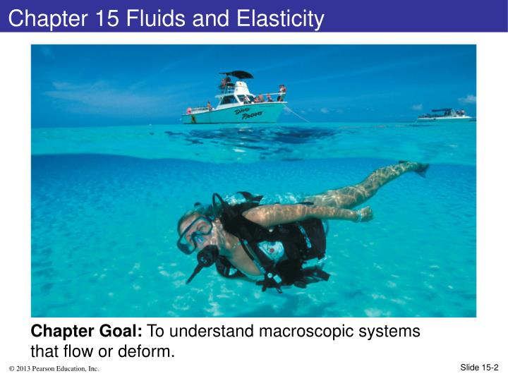 chapter 15 fluids and elasticity n.