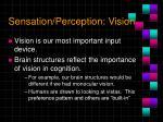 sensation perception vision