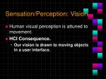 sensation perception vision1