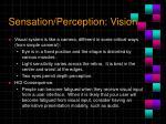 sensation perception vision2