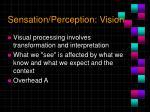 sensation perception vision5