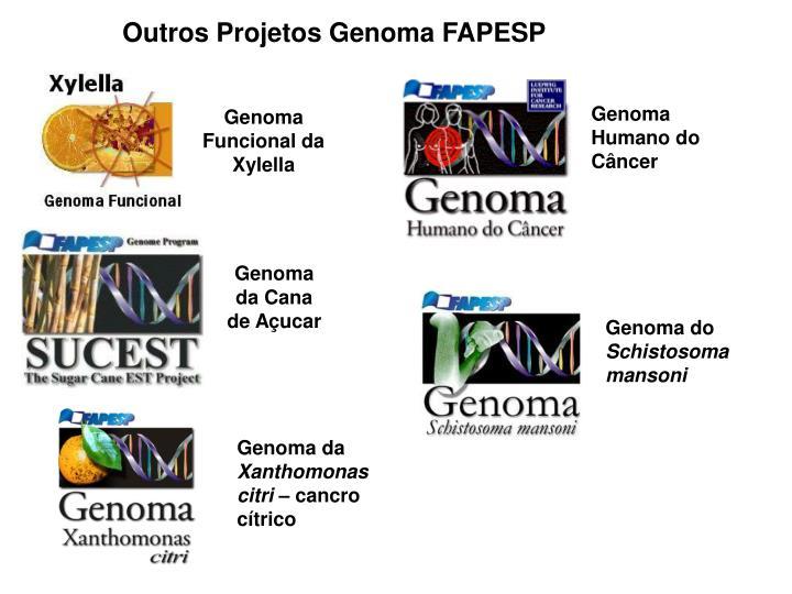 Outros Projetos Genoma FAPESP