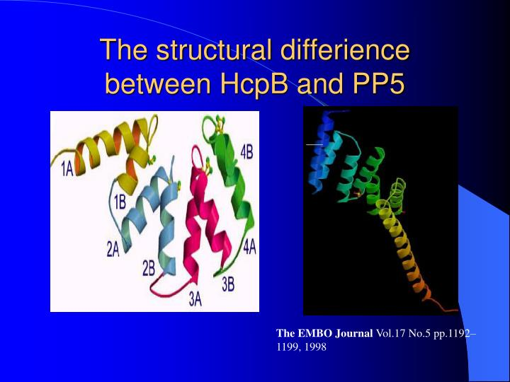 The structural differience between HcpB and PP5
