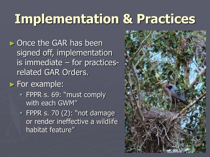 Implementation & Practices