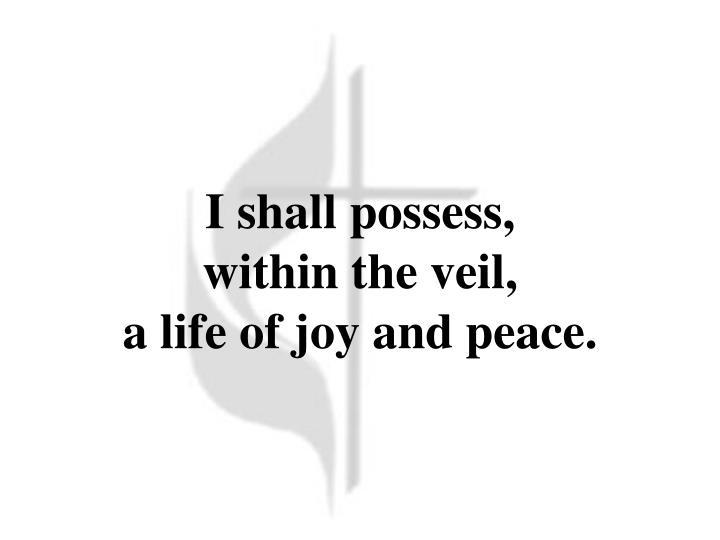 I shall possess,