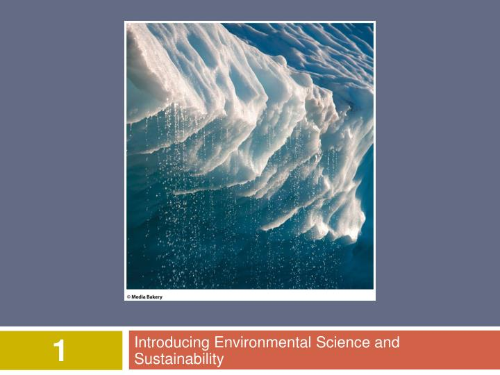 introducing environmental science and sustainability n.