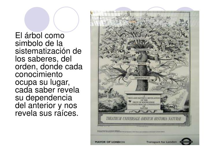 El árbol como simbolo de la sistematización de los saberes, del orden, donde cada conocimiento ocupa su lugar, cada saber revela su dependencia del anterior y nos revela sus raíces.