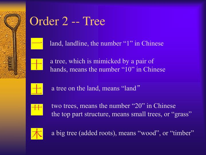 Order 2 -- Tree