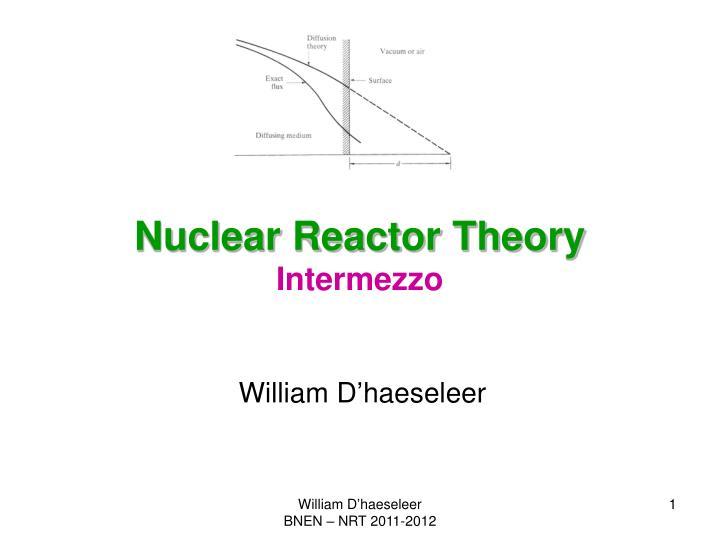 nuclear reactor theory intermezzo n.