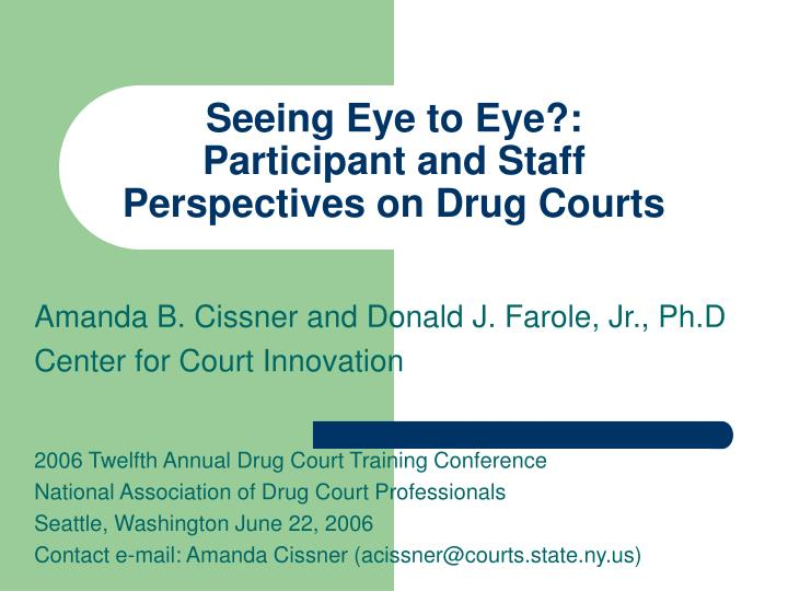 seeing eye to eye participant and staff perspectives on drug courts n.
