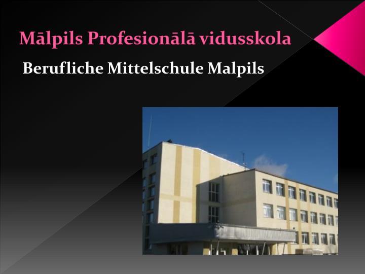Mālpils Profesionālā vidusskola