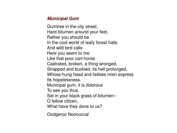 municipal gum