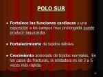 polo sur3