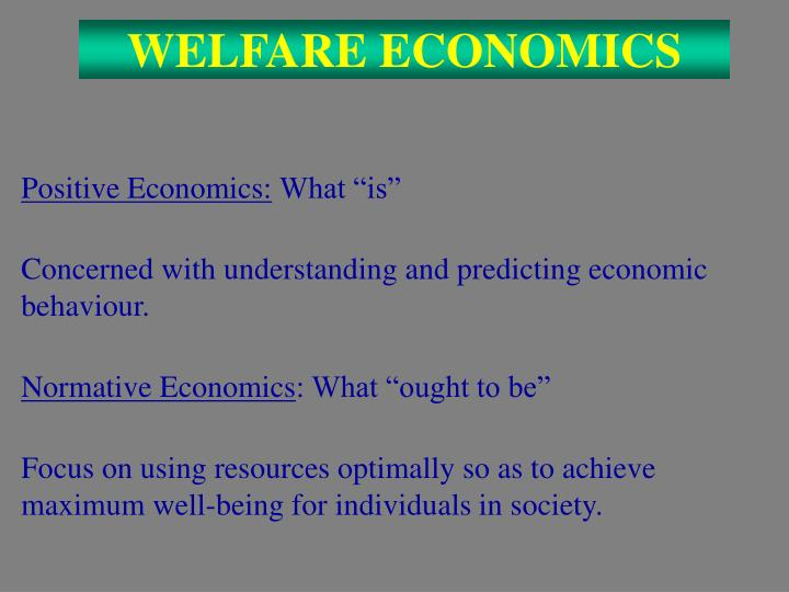 welfare economics n.