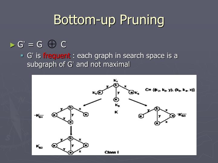 Bottom-up Pruning