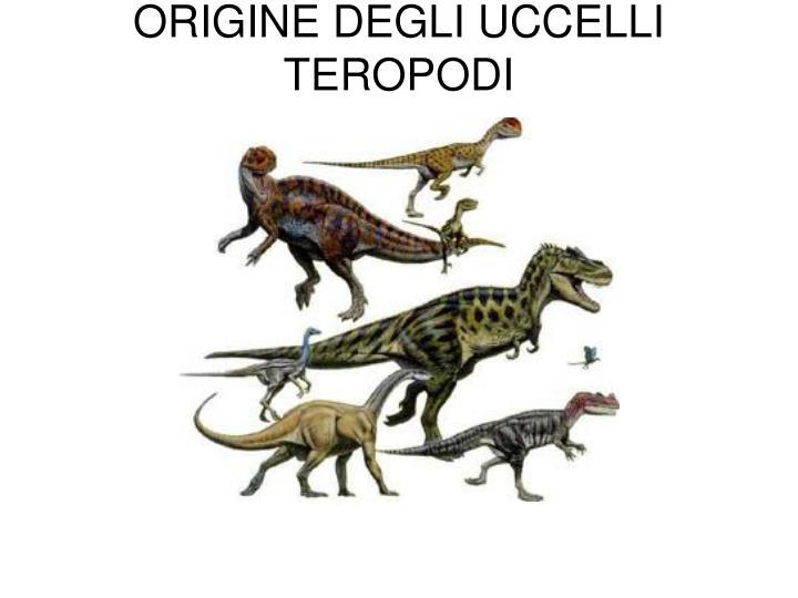 origine degli uccelli teropodi n.