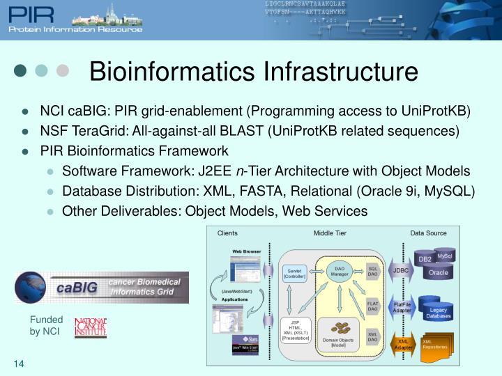 Bioinformatics Infrastructure