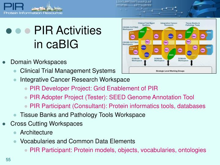 PIR Activities in caBIG