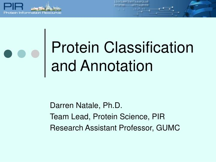 Protein Classification and Annotation