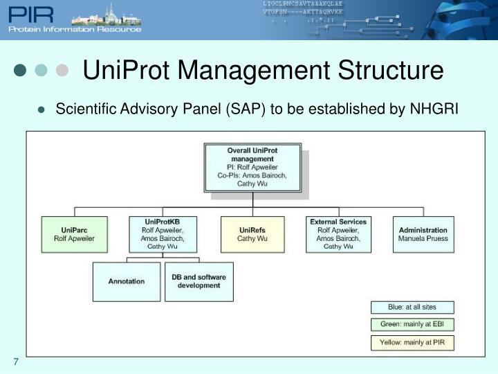 UniProt Management Structure