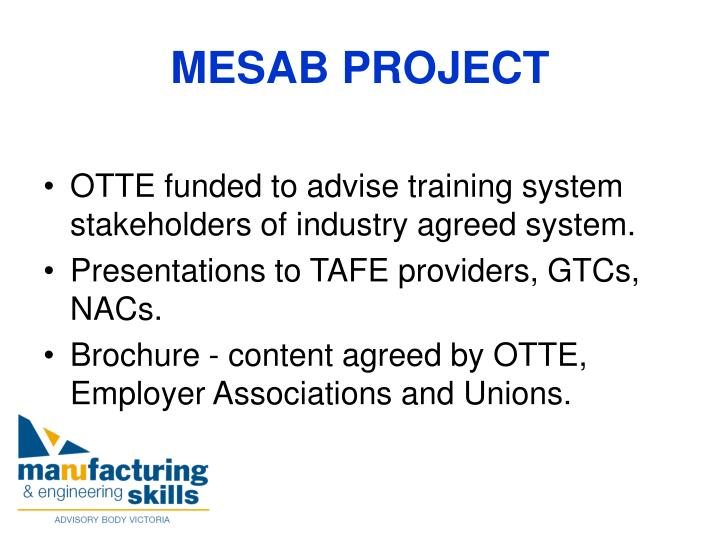 Mesab project