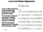 local and global alignments1