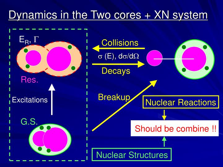 Dynamics in the two cores xn system