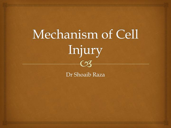 PPT - Mechanism of Cell Injury PowerPoint Presentation - ID