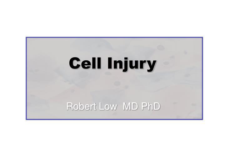 cell injury n.