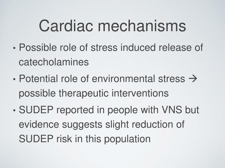 Possible role of stress induced release of catecholamines