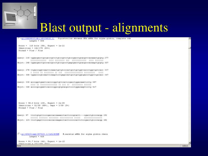 Blast output - alignments