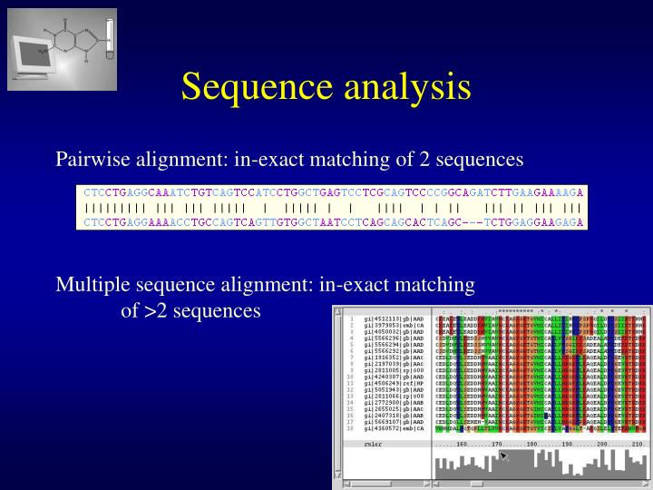 Multiple sequence alignment: in-exact matching
