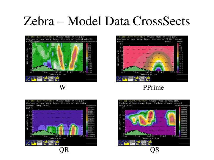 Zebra – Model Data CrossSects
