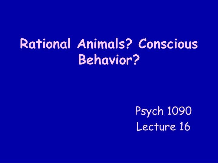 rational animals conscious behavior n.