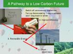 a pathway to a low carbon future
